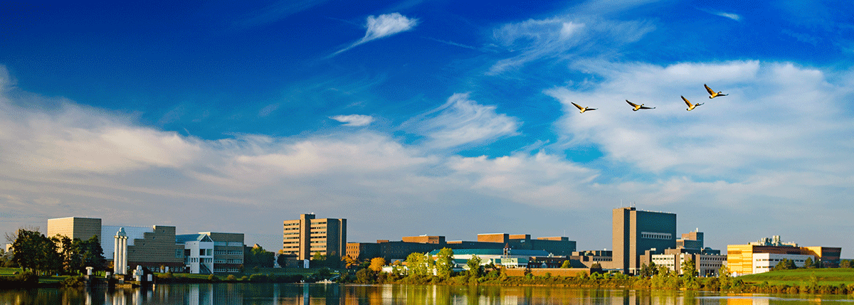 University at Buffalo Skyline
